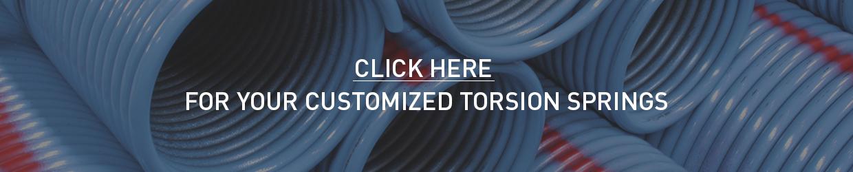 custom torsion spring EN
